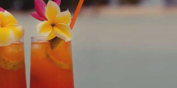 Best Beach Bars in San Diego |